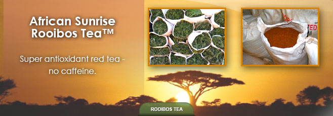 African Sunrise Rooibos tea
